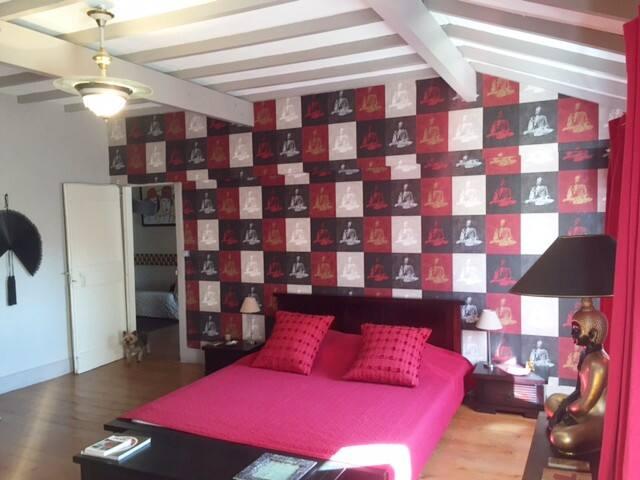Chambre très charmante dans une maison de maître - Mazères - Szeregowiec