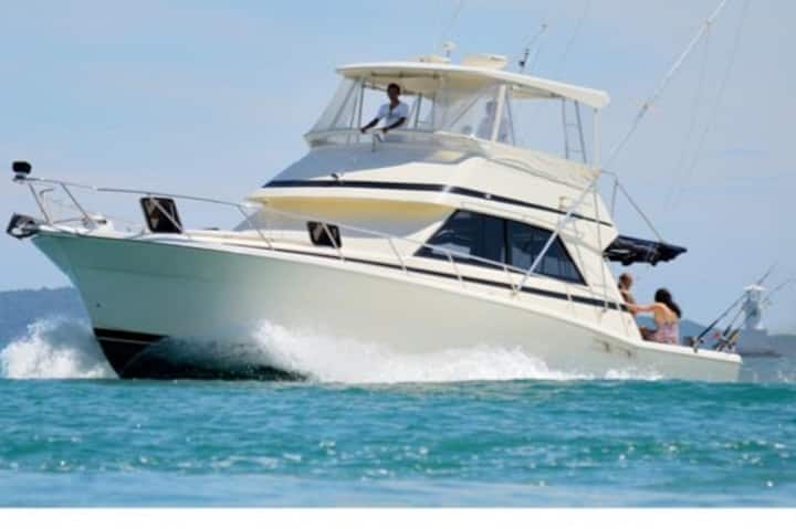 Motor yacht for day trips and overnight cruises