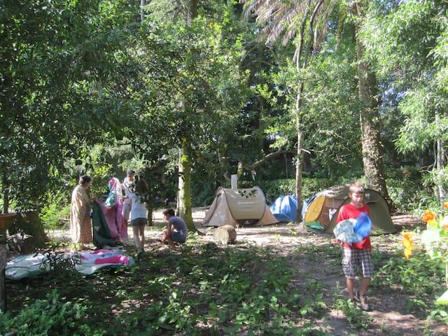 Acampamento em grupo/Family Camping