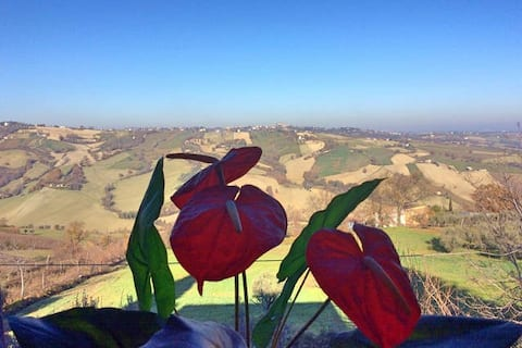 Room LUDOVICA @ Villa Giuditta: quiet countryside