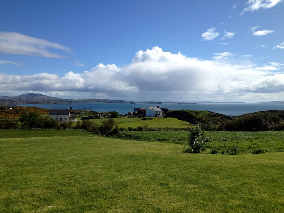Garden view of Cape Clear