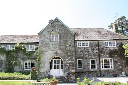 Large Manor House sole use - Halwell - Dom