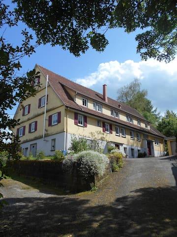 """Ferienwohnung """"Haus am Warnberg"""" - Freudenstadt - Appartement"""