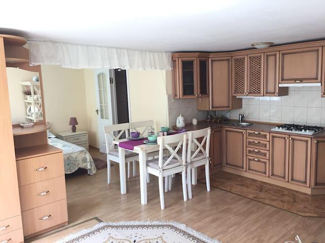 Apart Provence - Сколе - Appartement