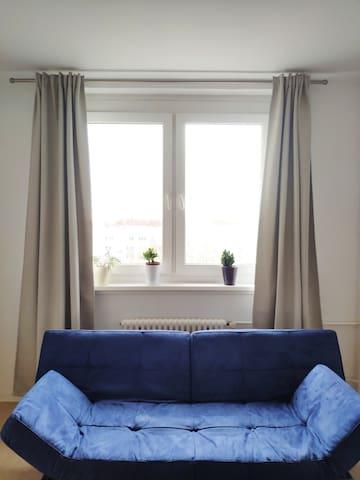 Single Studio Apartment near Alexanderplatz