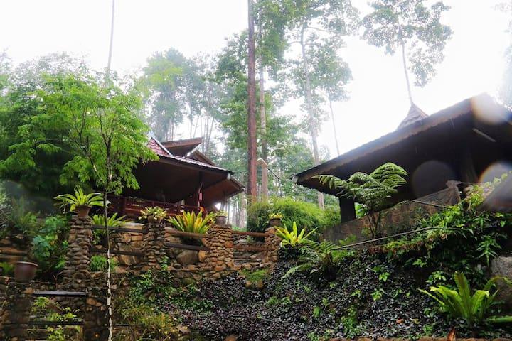 ForRest House - Bentong - Casa de camp