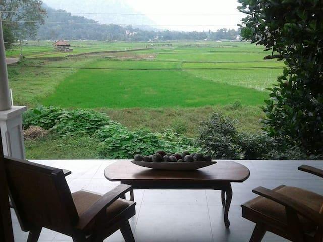 Ruwan - Home