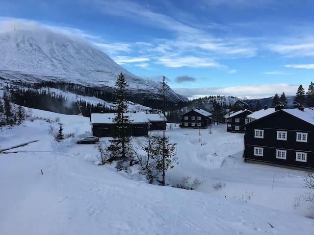 Ski in/ski out 3 roms leilighet på Gaustablikk