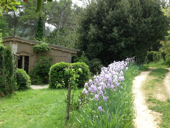 Cosy & charming cabin, Provence