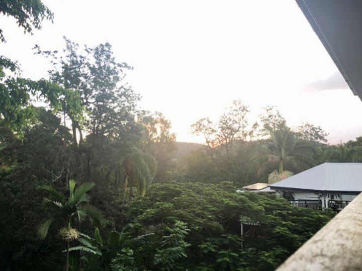 Kookaburra Cottage, Bardon - Room to Rent