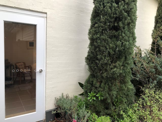 Access from studio to outdoor seating