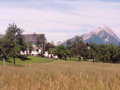 Ferienhof Kreilgut - Walchegg