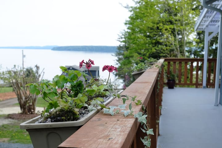 Oceanview, family friendly cabin - Powell River - Huis