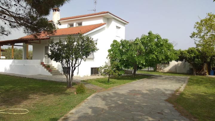 Entire villa with big garden and BBQ amenities.