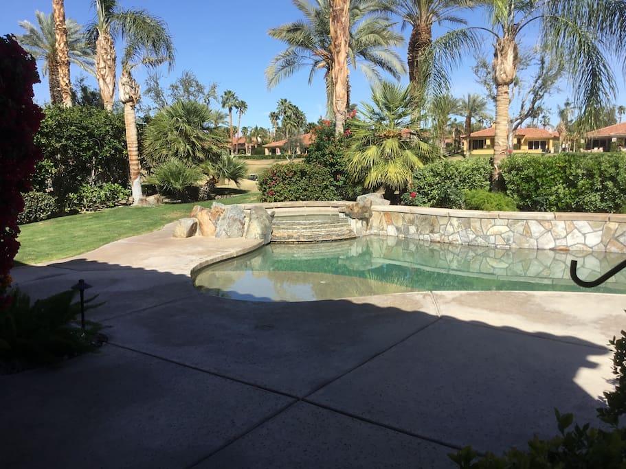 Backyard Pool and Hottub