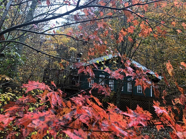 Falling Leaf Cabin..A true mnt cabin in the woods