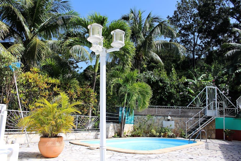 Appart villa piscine 2 rooms deshaies villas louer for Villa deshaies avec piscine