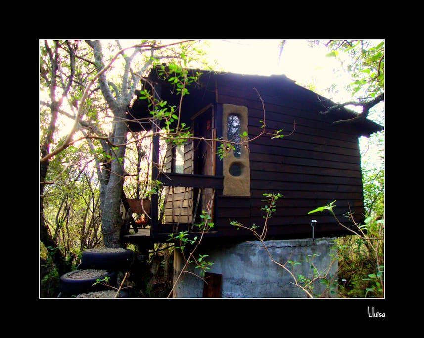 Another view of the cabin