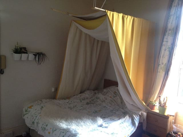 Cosy double bedroom Close canal - Dublin