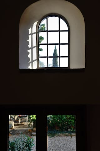 Window on the garden