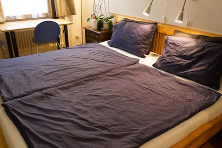 Big clean room with King Size Bed   - Zurich - Flat