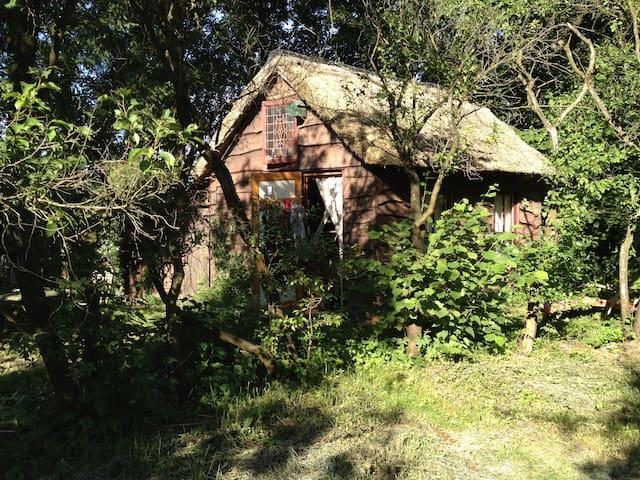Heksenhuisje midden in het bos - Uffelte - Hytte