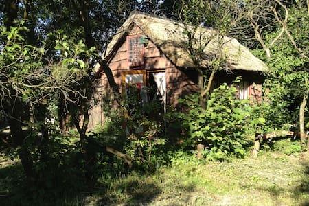 Heksenhuisje midden in het bos - Uffelte