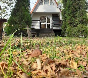 Domek nad Jeziorem Przeczyce 7 min. od Lotniska