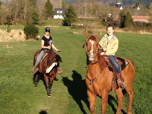 Room with queen bed on our gorgeous horse ranch. - Port Angeles - Huis