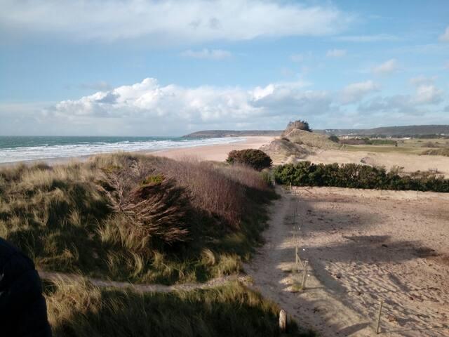 Nid des Dunes