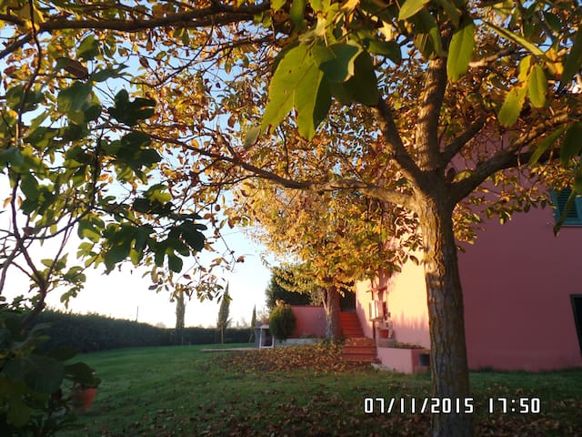 Country House in  Florence's hills - San Vincenzo A Torri - House