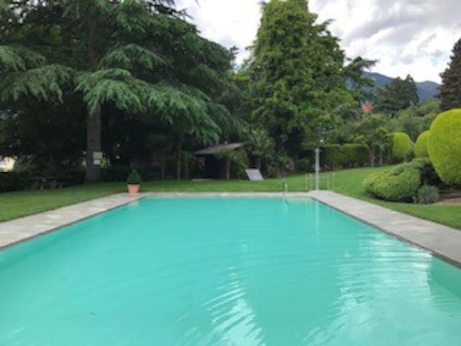 Großer beheizter Pool mit Gartendusche und Poolliegen in parkähnlichen Garten mit Blick auf Meran und die umliegenden Berge