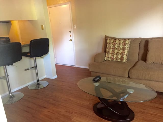 CLOSE TO DOWNTOWN! - Austin - Apartment