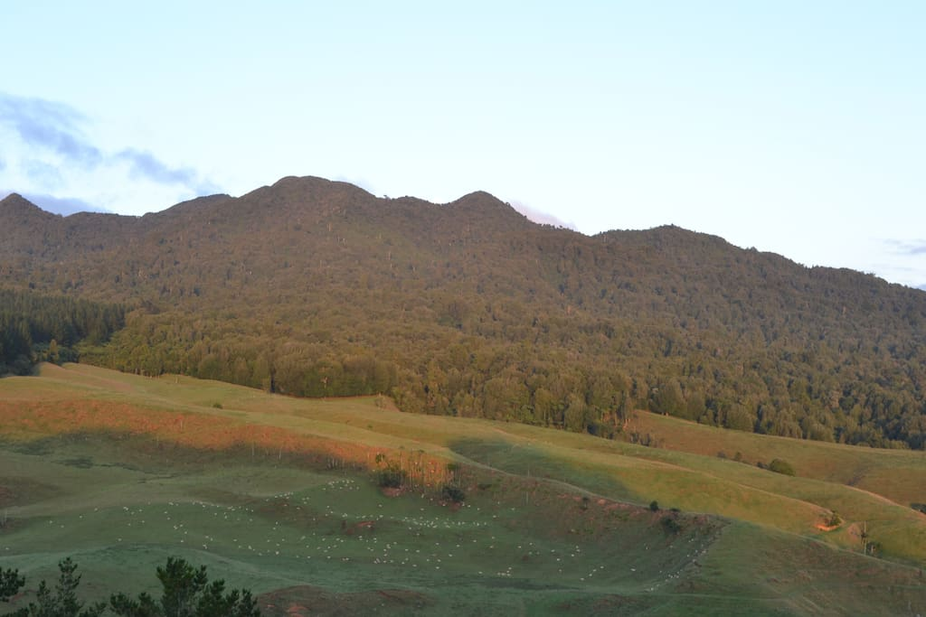 Views overlooking Mt Pirongia - sunset over the mountain.