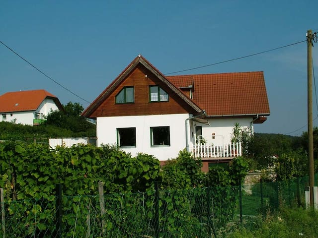 Large home in the vineyards - Gyenesdiás - Apartment