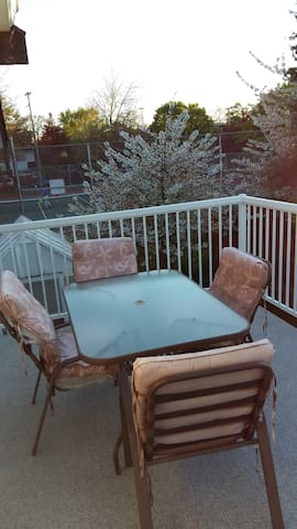 Bright spacious 1 bedroom suite in James Bay - Victoria - Gästsvit