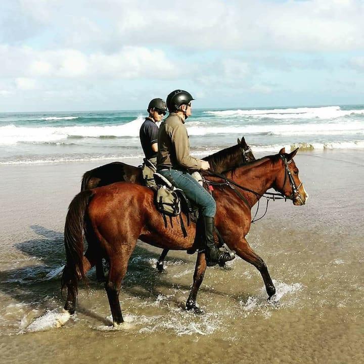 Beginners ride on the Beach