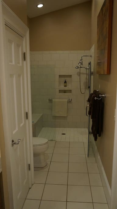ADA walk-in shower and ADA commode