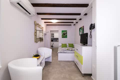 Apartments Bella Tara - Stylish Studio 2.P