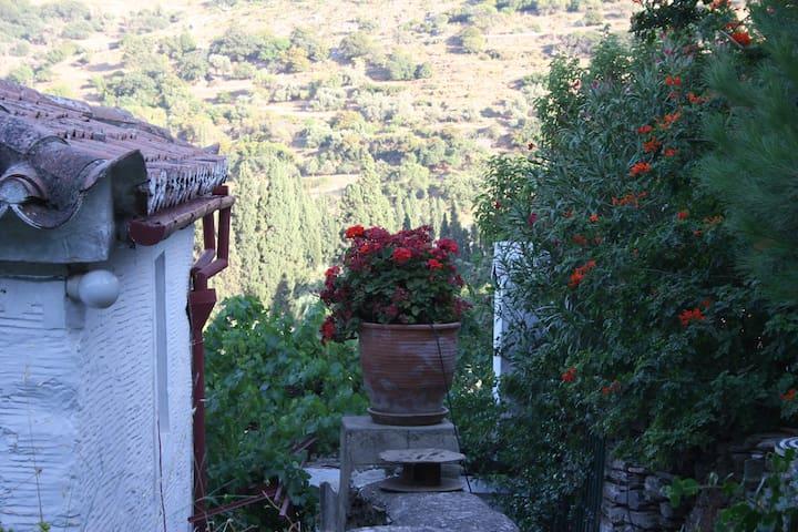 Old, stone farmhouse. - Andros - Diğer