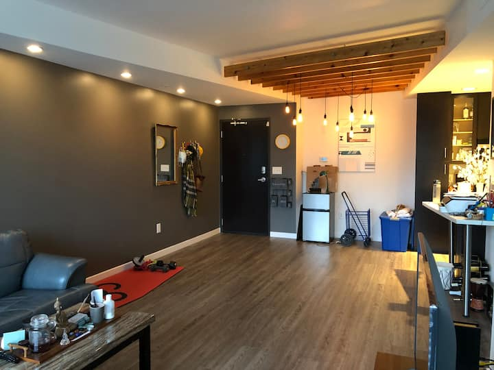 Furnished apartment near downtown