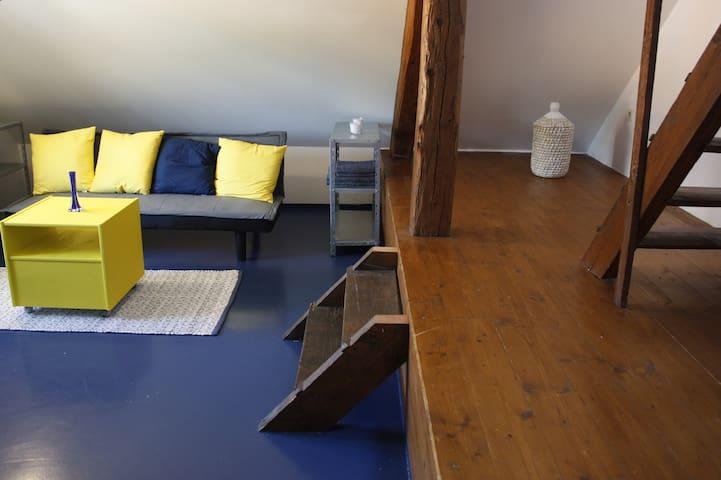 Apartment in Attic