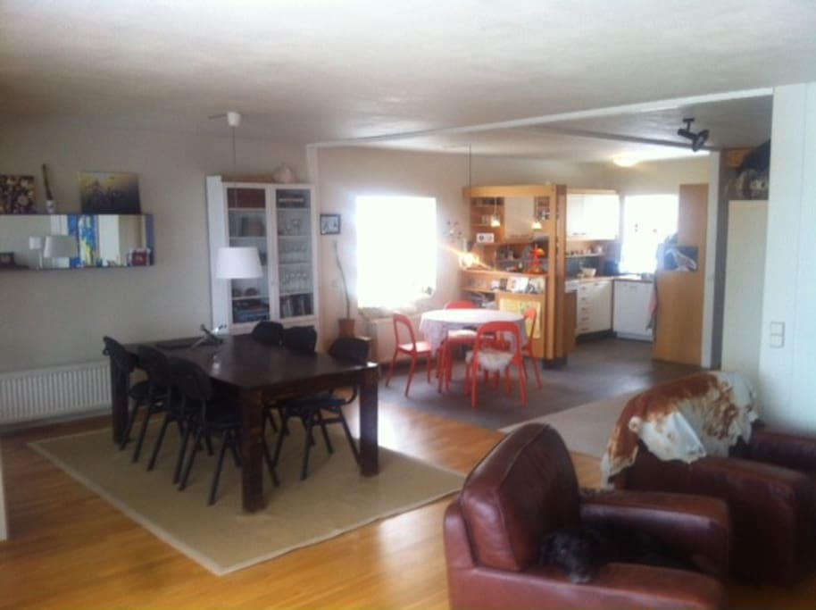 The roomy livingroom and kitchen