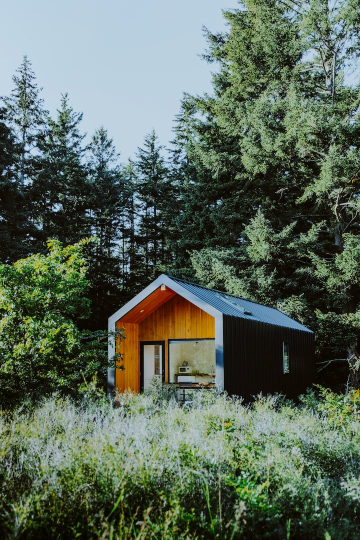 Private guesthouse surrounded by majestic firs