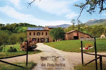 Da Foschetta: B&B, nature and wine