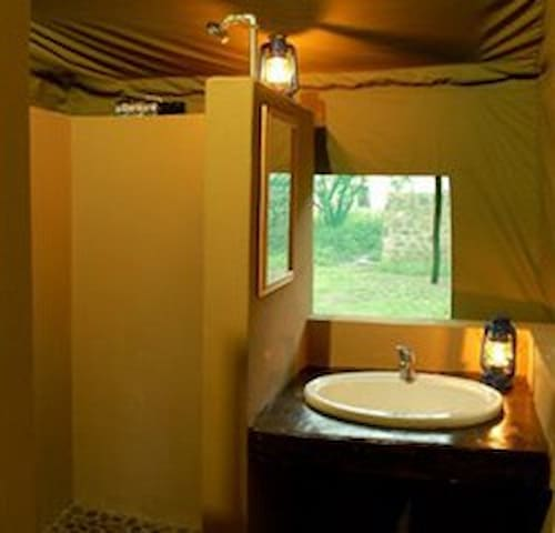 Camping tents in Trivandrum - Kovalam - Tent