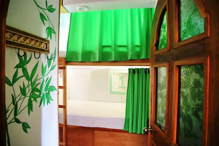 Hostal Natura Green Cancun Room 8 Beds