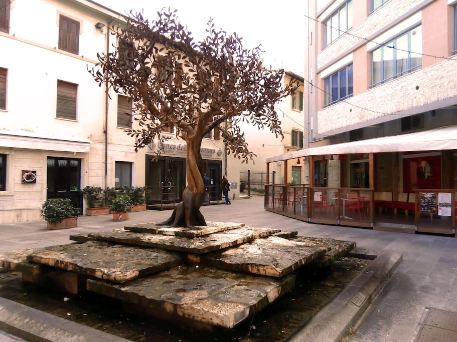 Piazza San Michele, col suo caratteristico albero di melograno / San Michele's Square, with its beautiful pomegranate tree