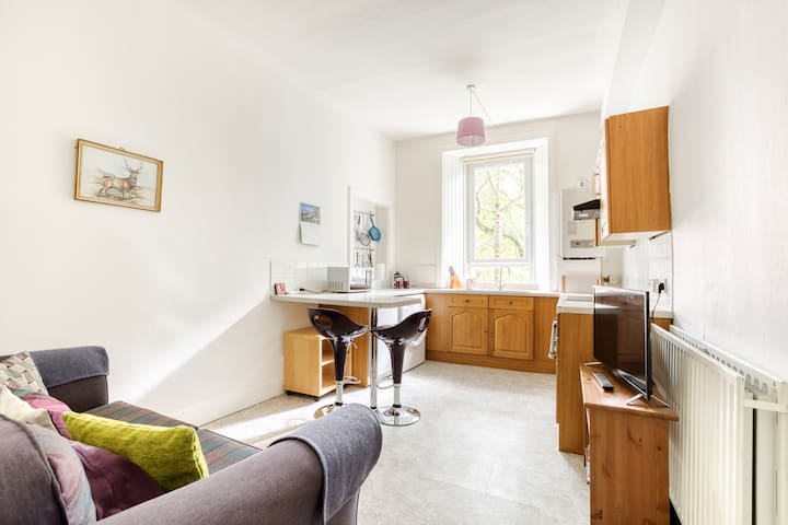 1 bed flat, Tollcross