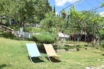 Garden [summer]